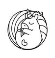 barainbow unicorn vector image