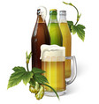 beer mug hops three beer bottles vector image vector image