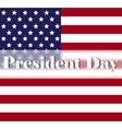 Bright Presidents Day background with american vector image vector image