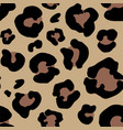 leopard skin hand drawn animal print drawing vector image vector image