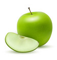 realistic granny smith or green apple vector image