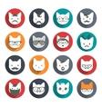Stylized animal avatar set Cats vector image vector image