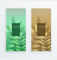 vertical leaves banner design set vector image