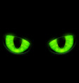 green cats eyes isolated on a black background vector image