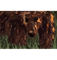 Grizzly vector image vector image