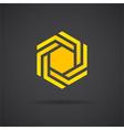 Hexagonal design element vector image