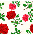 seamless texture red roses cracks in the porcelain vector image vector image