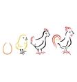 Chicken farm vector image vector image