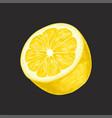half of fresh lemon fruit on a vector image vector image