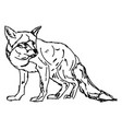 sad fox drawing on white background vector image vector image