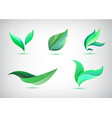 set green leaves icons vector image