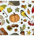 set of autumn symbols pattern vector image vector image