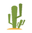 cactus flat vector image vector image