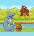 cartoon bear is looking with great surprise at vector image