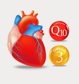 coenzyme q10 and omega 3 heart vector image