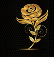 gold flower rose on black background vector image vector image