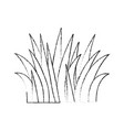 grass field isolated icon vector image