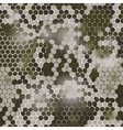 Hexagonal camouflage pattern vector image