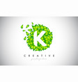 k green leaf logo design eco logo with multiple vector image vector image