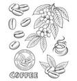 coffee elements set vector image vector image