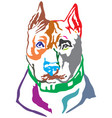 colorful decorative portrait of dog american vector image vector image