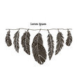 feather collection for your design vector image vector image