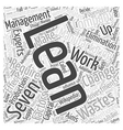 lean manufacturing advisor change management Word vector image vector image