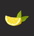 slice of fresh lemon with leaf vector image vector image