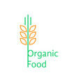 thin line wheat ears like organic food logo vector image
