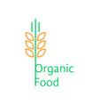 thin line wheat ears like organic food logo vector image vector image