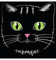 black cat head vector image vector image
