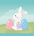 happy easter sitting rabbit with eggs on grass vector image