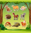 many animals in jungle background vector image vector image