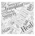 Preparing for Hair Transplant Surgery Word Cloud vector image vector image