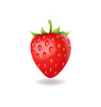 realistic sweet strawberry with green leaves vector image