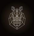 rhinoceros head geometric lines silhouette icon vector image vector image