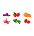 ripe glossy vegetables pumpkin eggplant pepper vector image vector image