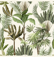 seamless pattern with exotic trees vector image vector image