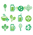 Spinach healthy food - green smoothie icons set vector image