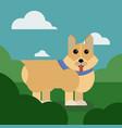 cartoon puppy of cute dog vector image