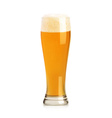 Beer object vector image