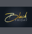 black friday inscription for sale and discount vector image