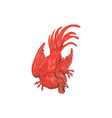 Chicken Rooster Crouching Drawing vector image vector image