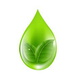 green drop vector image vector image