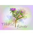 thistle watercolor food vector image vector image