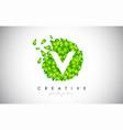 v green leaf logo design eco logo with multiple vector image