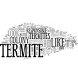 what does a termite look like text word cloud vector image vector image