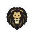 wild lion head logo vector image vector image