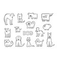 set of different dog breeds funny vector image