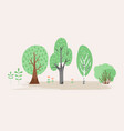 stylized of plant trees bush vector image